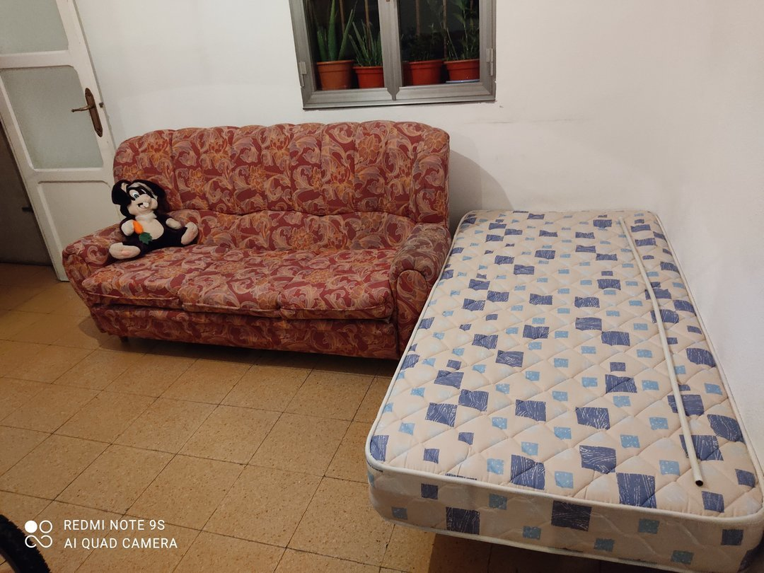 alquilo salón con cama