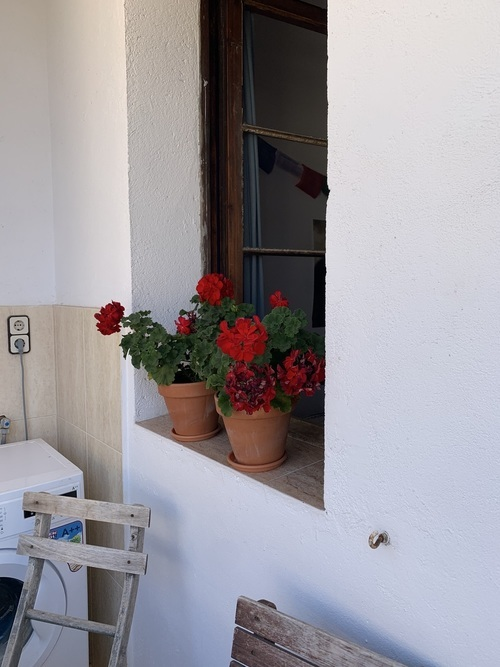 1-bed room flat with balcony in El Poblenou